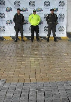 Colombia tịch thu hơn 1,5 tấn cocaine