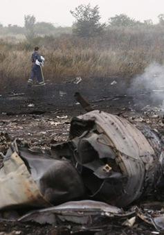 Bắt nghi phạm mưu sát điều tra viên vụ MH17