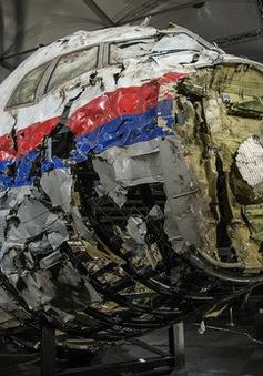 MH17 bị bắn rơi bằng tên lửa Buk của Nga