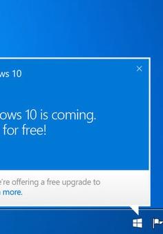 Ép người dùng nâng cấp lên Windows 10, Microsoft phải đền bù 10.000 USD