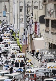Lễ hành hương Hajj: Khi giấc mơ biến thành ác mộng