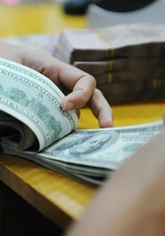 Đề xuất kéo dài cho vay ngoại tệ để thanh toán trong nước đến 31/12/2017