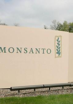 Monsanto sáp nhập Bayer: Tạo tiền lệ độc quyền hoá chất nông nghiệp.