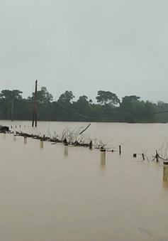 Mưa lớn, rốn lũ Hương Khê lại ngập lụt nhiều nơi