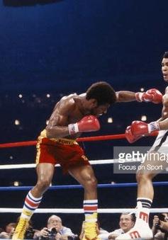 Sự nghiệp quyền Anh của Muhammad Ali