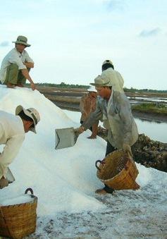 Diêm dân Phú Yên loay hoay tìm doanh nghiệp tạm trữ muối