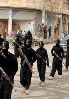 Tây Ban Nha bắt giữ 30 phần tử IS người Maroc