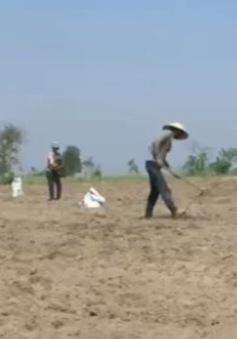 Nhọc nhằn mưu sinh mùa nắng nóng ở miền Trung