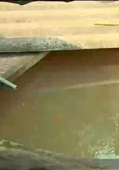 Quảng Trị: Gần 1.000 hộ dân phải dùng nước ô nhiễm suốt 20 năm