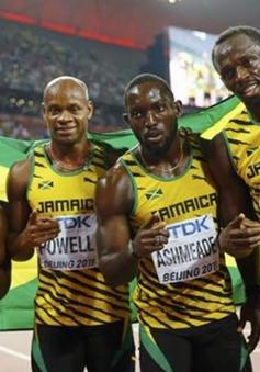 Usain Bolt nhiều khả năng sẽ bị tước huy chương vàng Olympic
