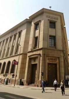 Ngân hàng Trung ương Ai Cập thả nổi đồng Bảng