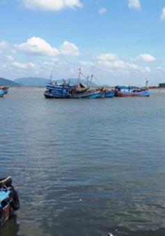 Nghị định 67 - Nguồn động lực để ngư dân vươn khơi