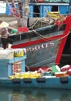 Bộ Y tế công bố hải sản an toàn ở 4 tỉnh miền Trung: Cần thông tin rõ ràng hơn