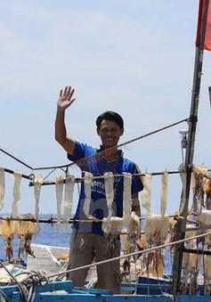 Sát cánh bảo vệ ngư dân trên các ngư trường truyền thống