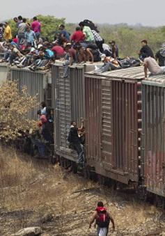 Lượng người nhập cư bất hợp pháp từ Mexico vào Mỹ tăng vọt