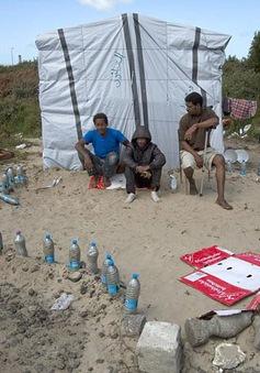 Cuộc sống trong trại tạm cư bất hợp pháp Calais