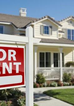 Thí điểm kê khai thuế điện tử hoạt động cho thuê nhà