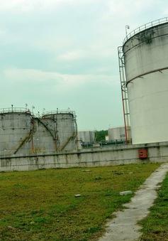 """Vì sao hàng loạt nhà máy Ethanol """"trùm mền""""?"""