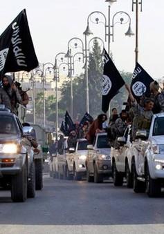 Đứng trước thất bại, IS thay đổi chiến lược