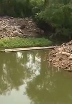 Người dân Đồng Mẫu, Thái Nguyên hoang mang trước nguy cơ nhiễm độc chì