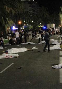 Thủ tướng Pháp: Thủ phạm ở Nice có thể có liên hệ tổ chức Hồi giáo cực đoan