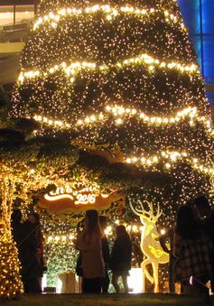 Không khí Giáng sinh tại Hà Nội
