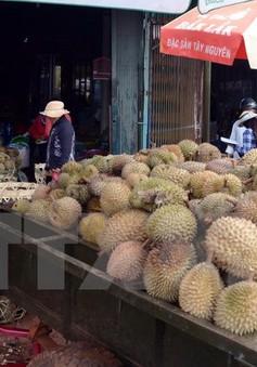 Nhiều loại trái cây mùa Hè giảm giá mạnh