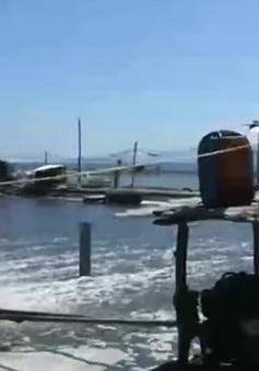 Nuôi tôm trên cát gây ô nhiễm môi trường ven biển