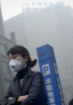 Gia tăng tỷ lệ tử vong sớm do ô nhiễm không khí