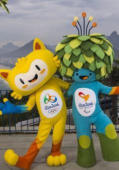 Brazil điều tra tham nhũng các công trình Olympic