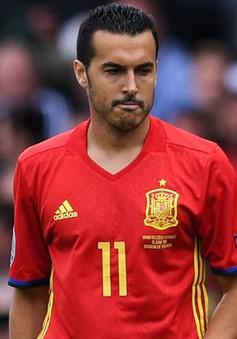 """Sợ bị đuổi khỏi EURO 2016, Pedro thanh minh vụ """"vạ miệng"""""""