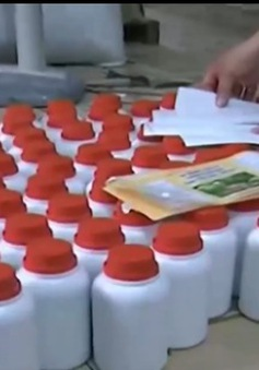 Phát hiện cơ sở sản xuất phân bón xả thải ra môi trường