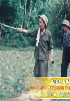 VTV phát sóng chùm PTL đặc sắc mừng Tết Nguyên đán Bính Thân