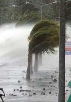 Bão Nida đổ bộ Trung Quốc, suy yếu thành áp thấp nhiệt đới