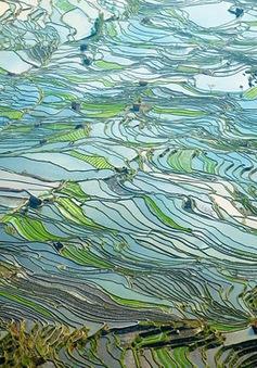 Cảnh đẹp mê mẩn lòng người ở Trung Quốc!