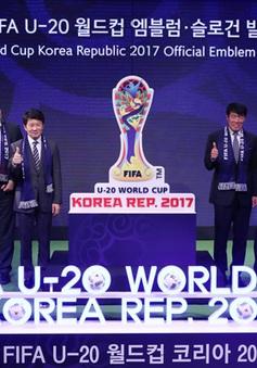 BTC FIFA U20 World Cup Hàn Quốc 2017 chúc mừng đội tuyển U19 Việt Nam