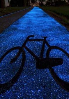 Tuyến đường phát sáng màu xanh kỳ diệu về đêm