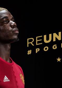 """Pogba bị huyền thoại Man Utd """"dằn mặt"""": Hãy xứng với giá tiền!"""