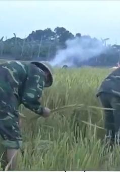 Lực lượng vũ trang Quân khu 3 giúp dân tránh bão