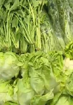 Người tiêu dùng Cần Thơ ưa chuộng cửa hàng thực phẩm sạch
