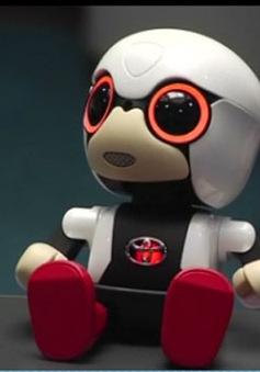 Robot dành cho người cô đơn ở Nhật Bản