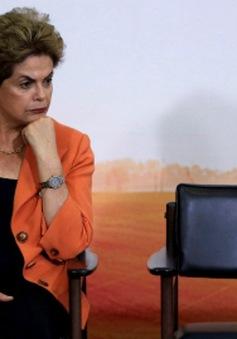 Chính trường Brazil tiếp tục rung chuyển vì vụ Petrobras