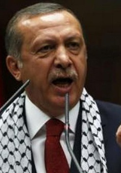 Tổng thống Thổ Nhĩ Kỳ đề xuất sửa đổi Hiến pháp