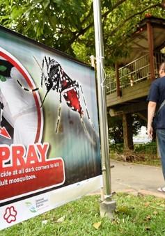 Số ca nhiễm virus Zika ở Singapore tiếp tục tăng