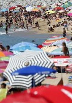 Tháng 5/2016 là tháng nóng nhất trong lịch sử