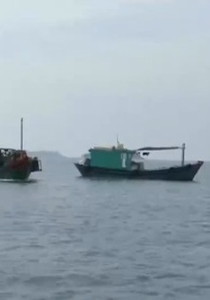 Gia tăng tình trạng ngư dân Việt Nam bị nước ngoài bắt giữ