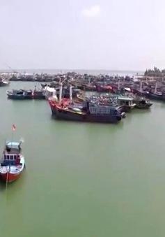 Chính sách bảo hiểm tàu cá vẫn được thực hiện theo Nghị định 67