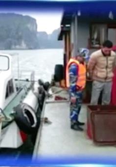 Bắt giữ tàu chở trái phép 30.000 lít dầu