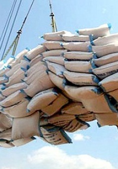 Nâng sản lượng gạo xuất khẩu hơn 5,7 triệu tấn