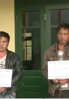 Thanh Hóa: Bắt quả tang vụ vận chuyển 69 bánh heroin
